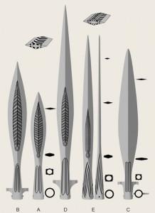 Dekorace a průměry kopí. Upravená Petersenova typologie. Převzato z Hjardar – Vike, 2011: 177.