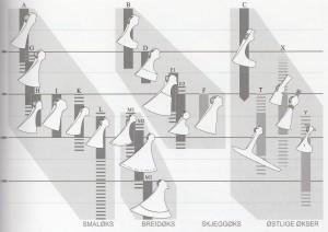 typologie seker