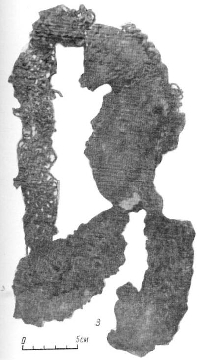 gnezdovo-zbroj